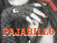 PAJARILLO
