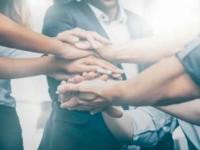 Importancia del trabajo en equipo