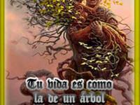 Tu vida es como la de un árbol