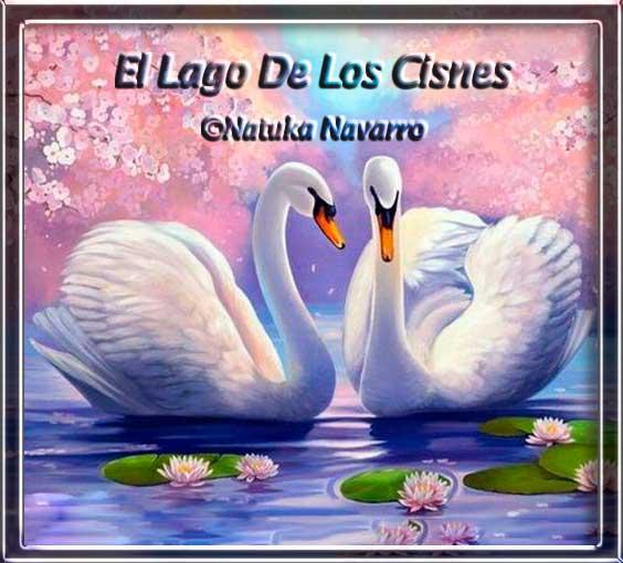 El Lago De Los Cisnes